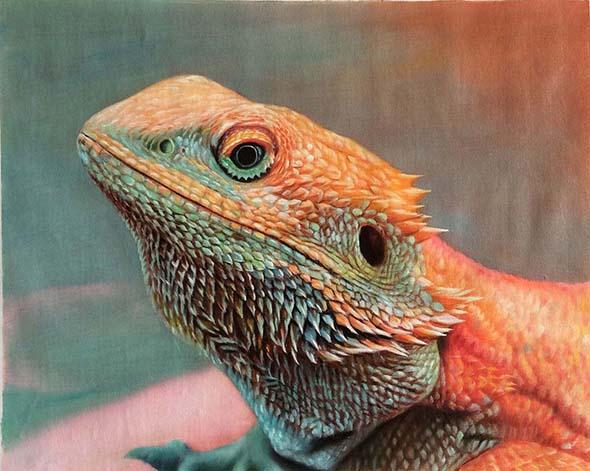 Ritratti animali esotici olio da fotografia