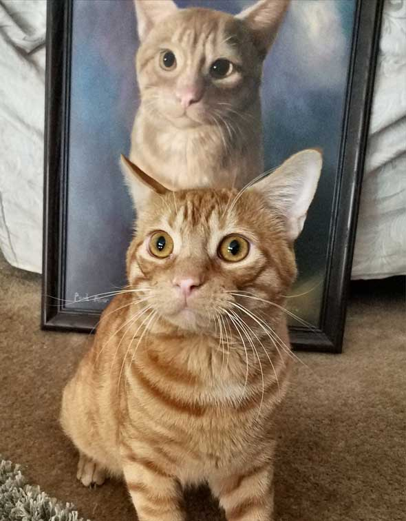Custom oil portrait of an orange cat