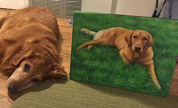 custom acrylic painting of Golden Retriever