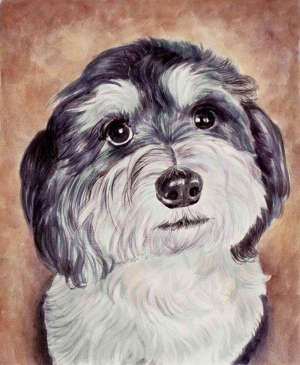 custom watercolor painting of a black and white mutt