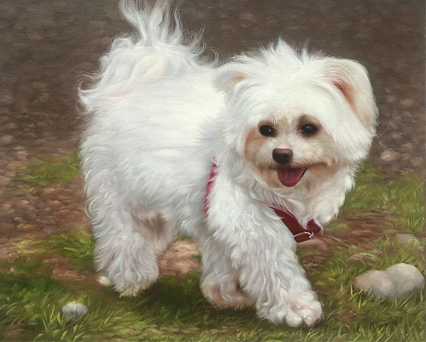 cute dog with red collar painting
