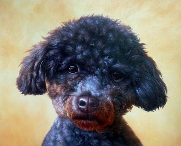 curly dog custom portrait