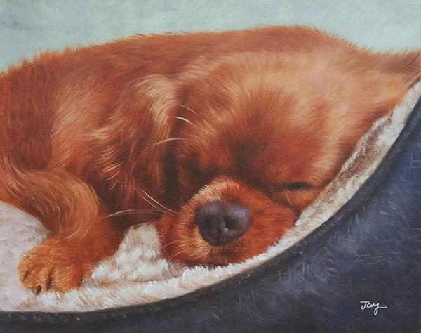 sleeping beauty dog oil art