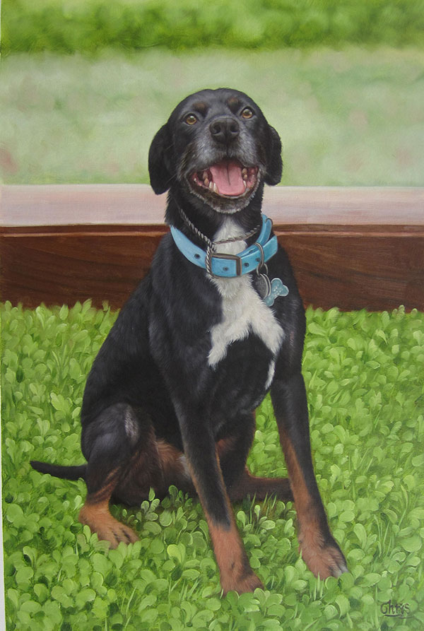 custom acrylic painting of black and white Mutt outdoors