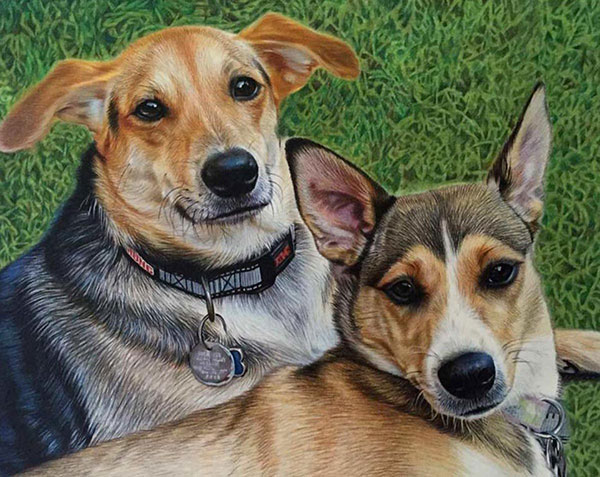 custom colored pencil drawing of two mutts in the grass
