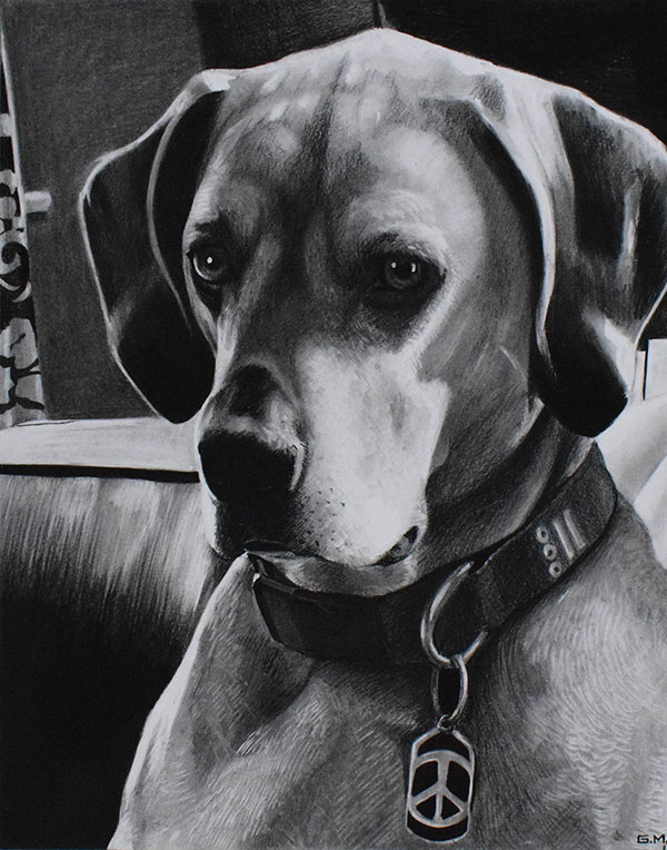 order charcoal drawing of a dog