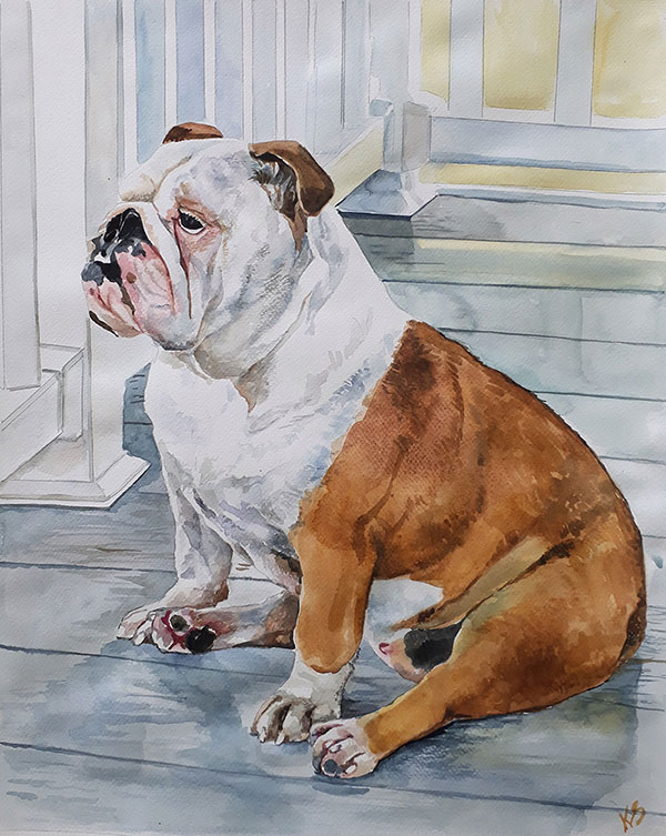 custom watercolor painting of brown and white Bulldog