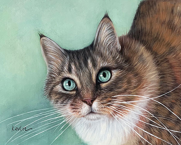 custom oil painting of a cat with bright blue eyes
