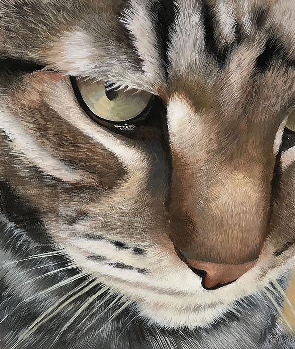 Ritratto gatto a pastello da fotografia