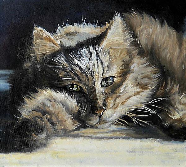 custom oil painting of long haired sleepy kitty