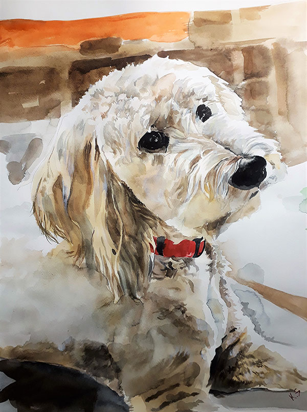 custom water color painting of curly white haired dog