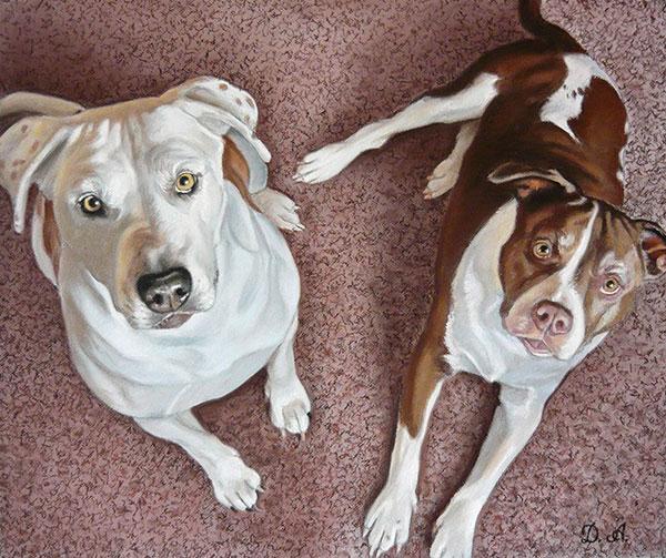 retratos al pastel, mascotas, perros.