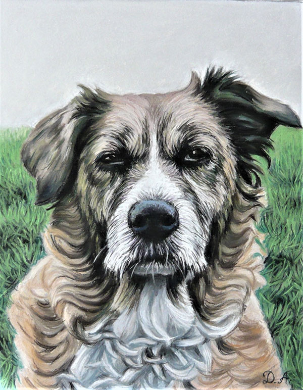 photo realistic pastel painting of a grumpy dog