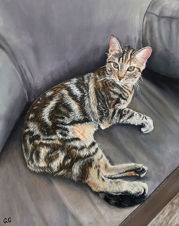 custom oil painting of a multi colored cat