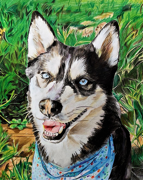 Stunning color pencil painting of a dog