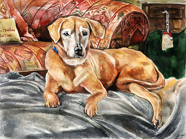 custom watercolor painting of dog laying by the couch