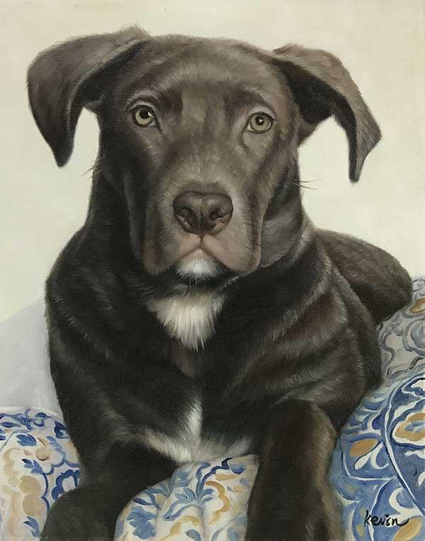 foto a cuadro, foto a pintura de perro