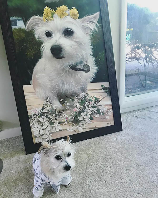 an oil painting of a tiny white rescue dog