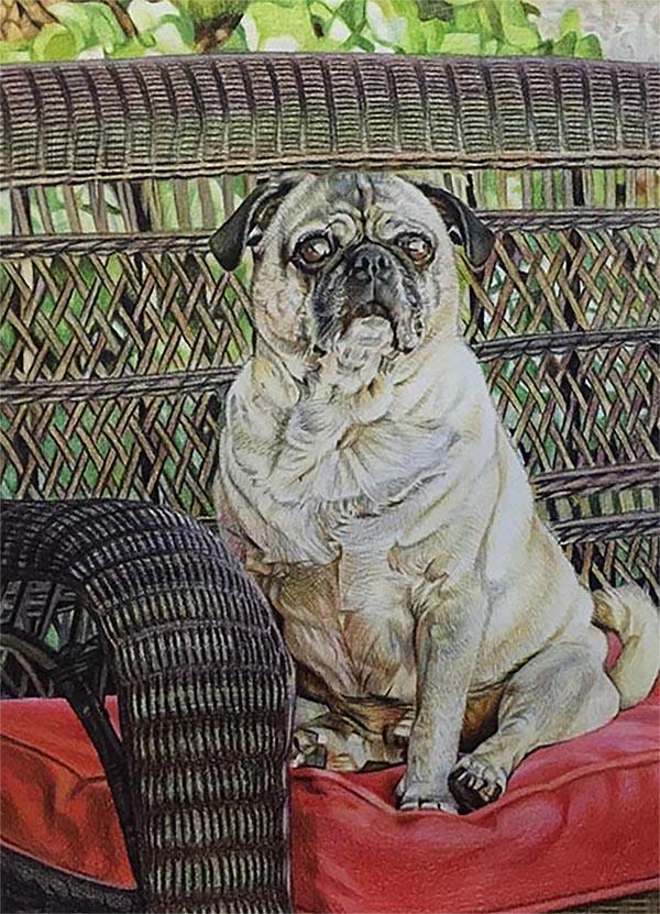 pug canvas painting