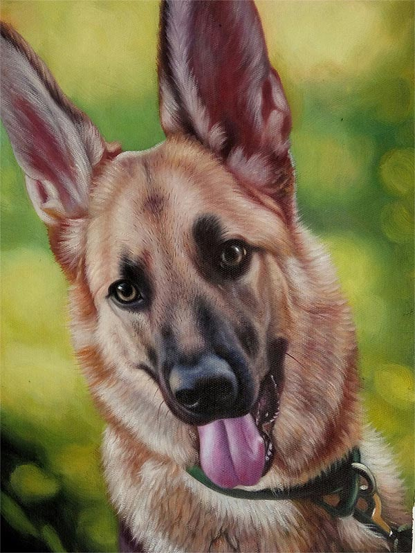 a custom oil painting of German shepherd
