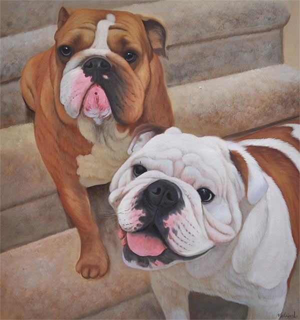 custom oil painting of two white and brown bulldogs