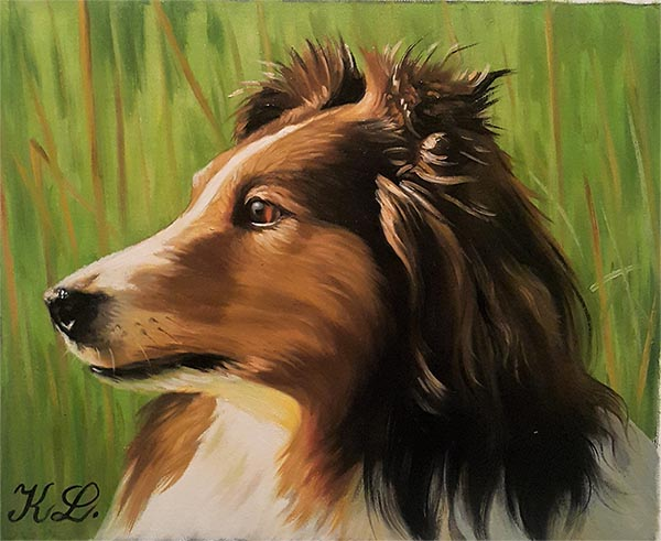 handmade closeup oil portrait border collie