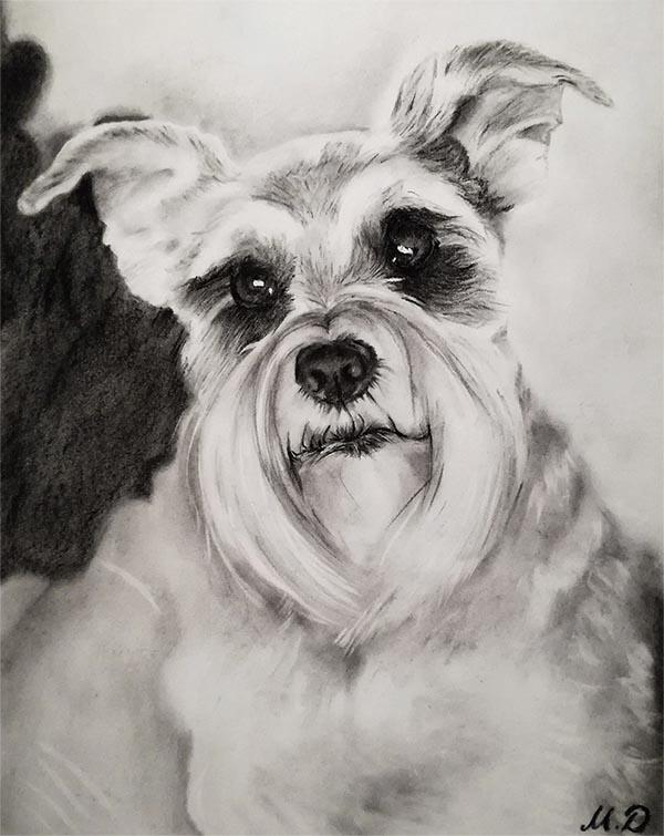 charcoal pet art