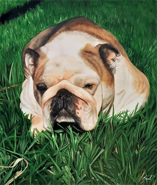 majestic resting dog in the nature painting