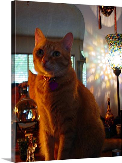 Pop Art of Lighted Cat on Canvas