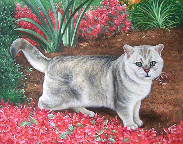 Custom oil handmade painting of light grey cat