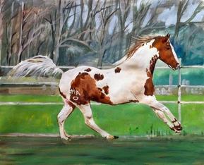 Galoppierendes Pferd Pastellgemälde