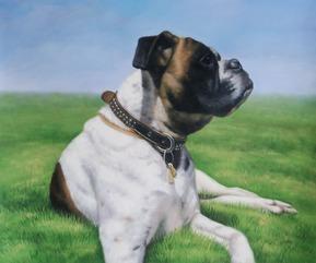 pintura del perro