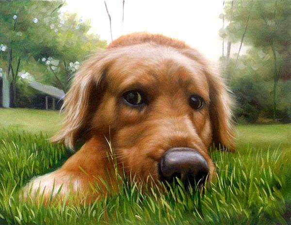 dog portrait in oil - paint your pet