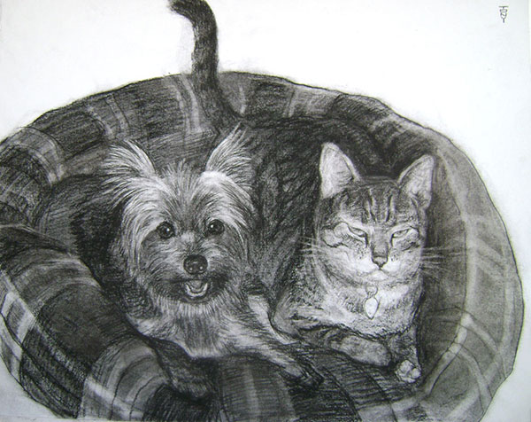pet portrait from a photo