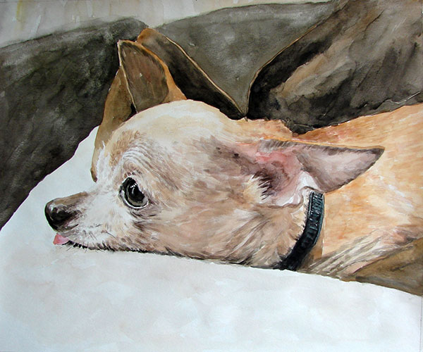 dog art in watercolor