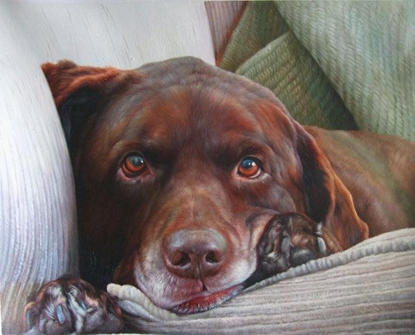 pet portraits local artist Labrador Retriever