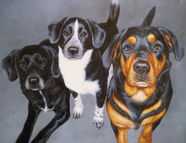 custom pet painting of three dogs combined