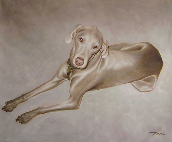 custom pet portrait oil painting dog Weimaraner
