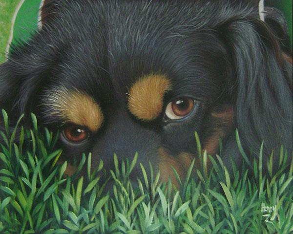 close up pet portrait local artists
