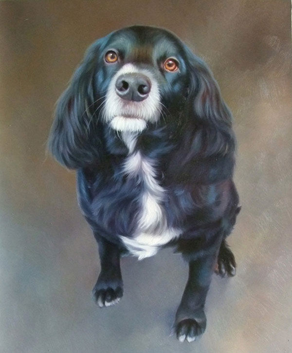 photo to painting pet portrait of Cocker Spaniel
