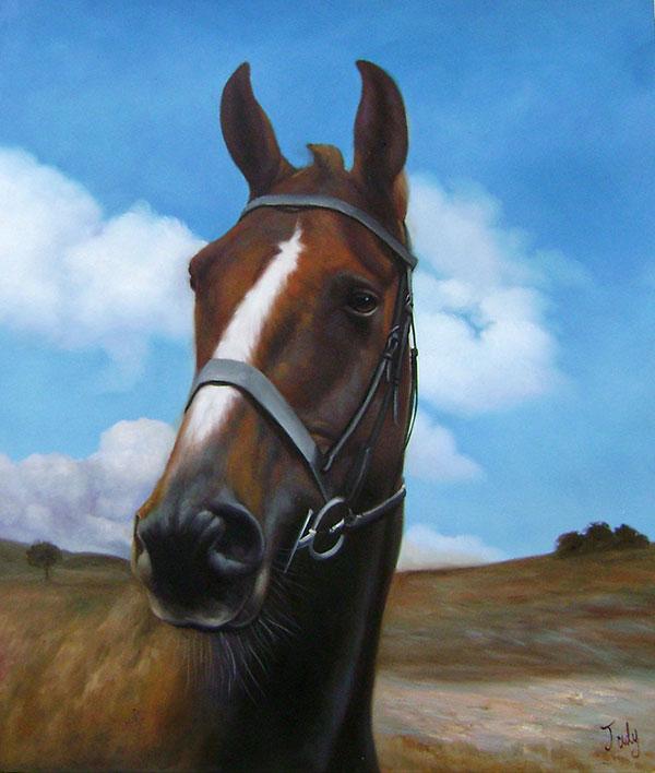 Cavallo con cielo azzurro olio da fotografia