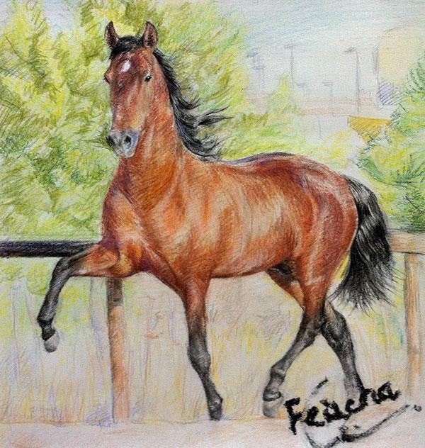 pintura al óleo de un caballo