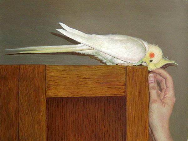 custom acrylic painting of bird with man petting it