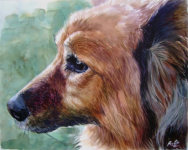 dog portraits on canvas pug in watercolor