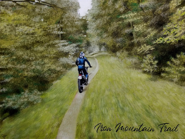cycling in the forest painted in pastel
