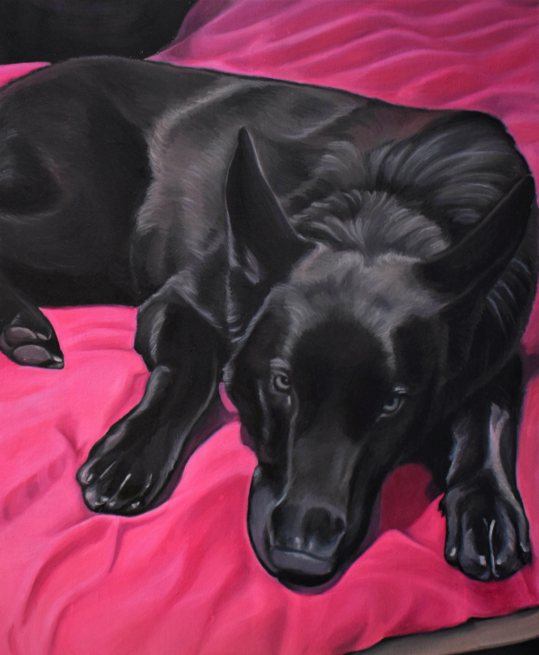 handmade oil portraot of black shepherd on pink couch