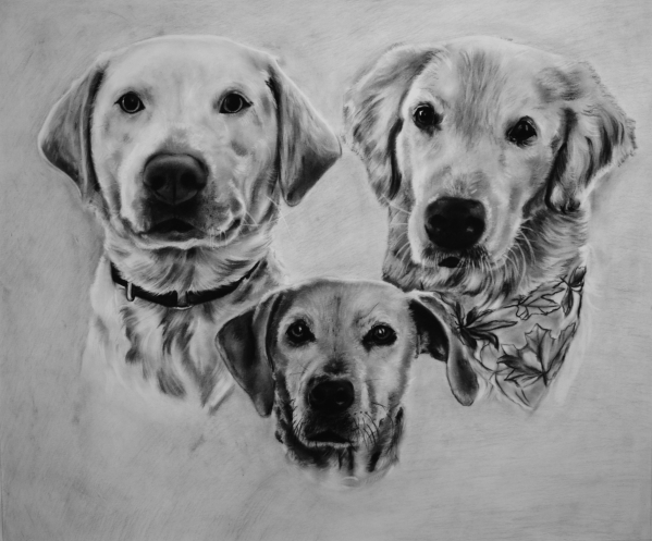 personalized charcoal drawing of three dogs