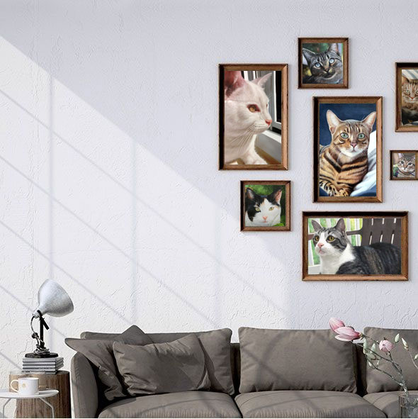 Browse our pet gallery