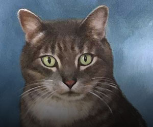 Cat Acrylic Portraits