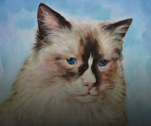 Cat Pastel Portraits